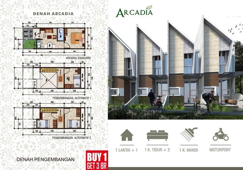 Arcadia LB/LT